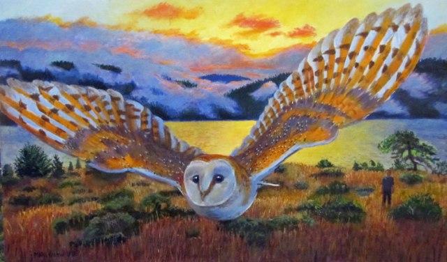 barn-owla
