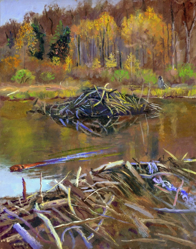 beaver lodge-Allegheny French brook