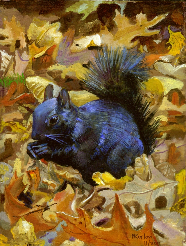 black Squirrel 2011