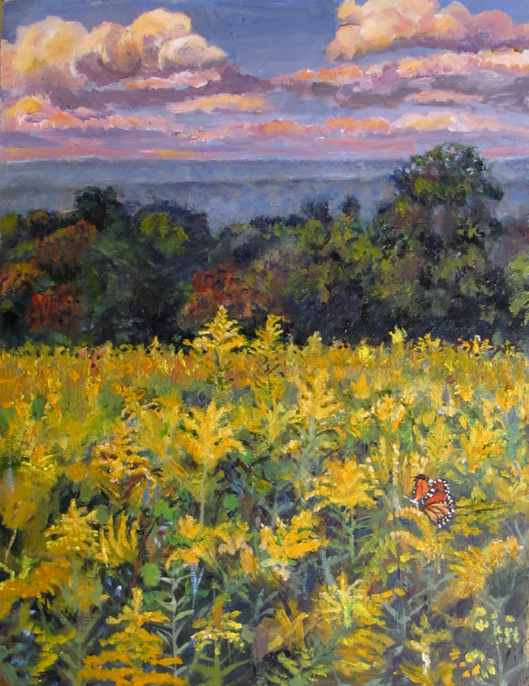 Goldenrod feild above CVNP