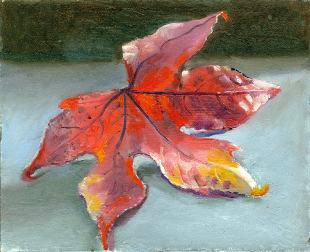 still life sweetgum leaf