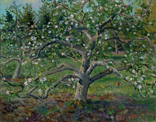 Apple-Tree-and-Robina