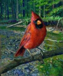 redbird-2-new