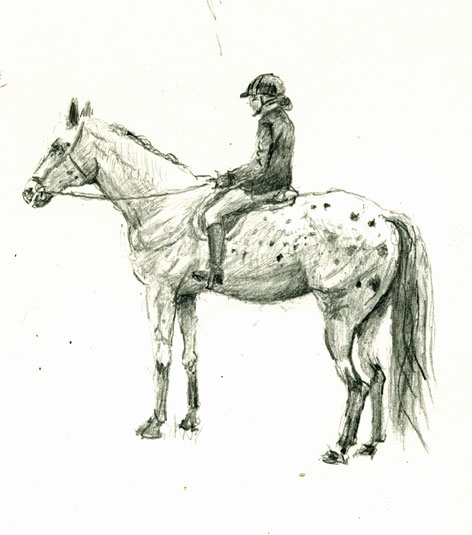 drawing-horse-4