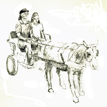drawing-pony-cart