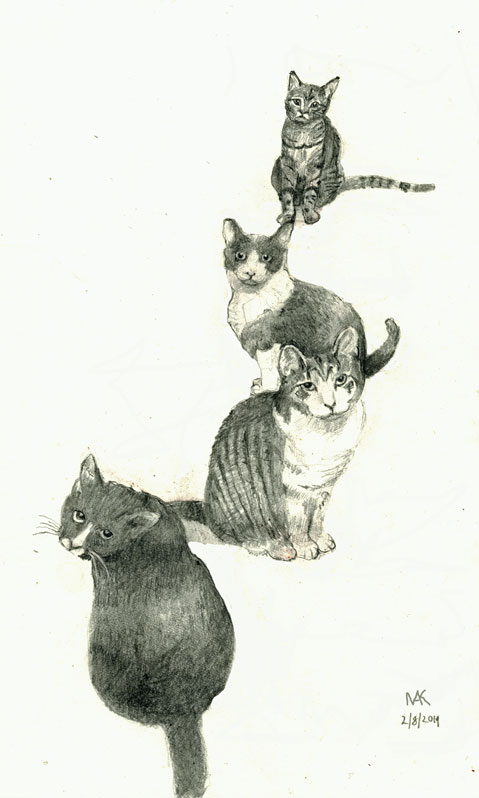 drawing-perspective-4-cats