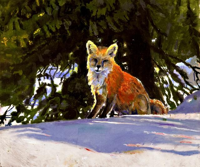 fox sitting.jpg